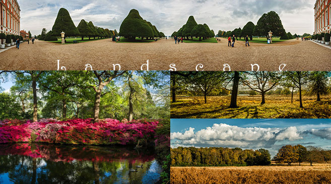 Southern British landscapes and panoramas including Azalea bushes