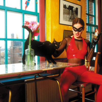 Catwoman, Paws for Lunch
